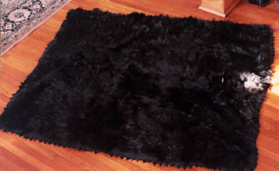 a bearskin lap robe that belonged to Charles Small