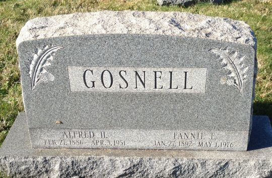 Alfred Howard Gosnell Jr